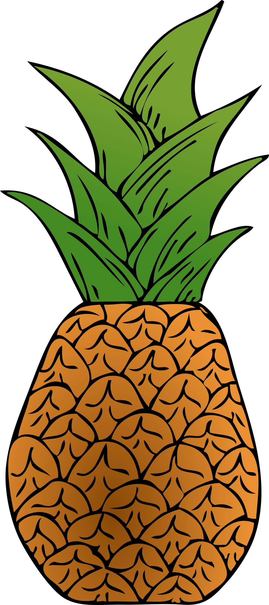 Pineapple clipart pdf. Alternative big image png