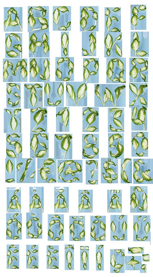 Clipart leaf pipal. Leaves font find inspiration
