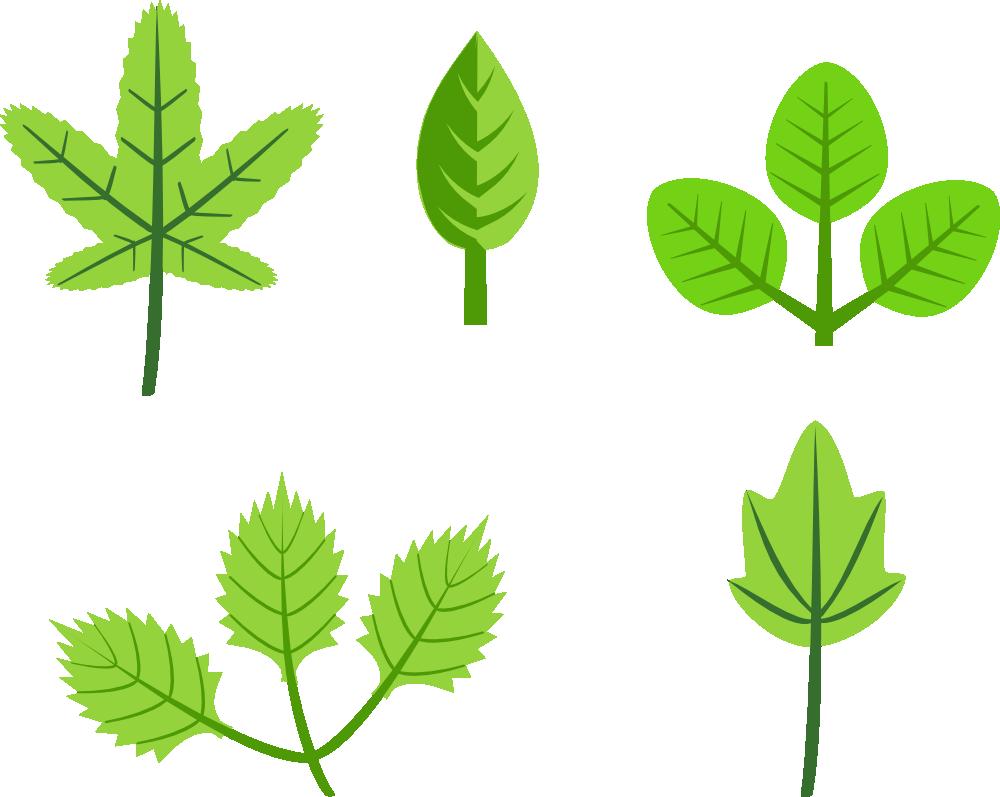 Leaf clipart printing. Onlinelabels clip art set