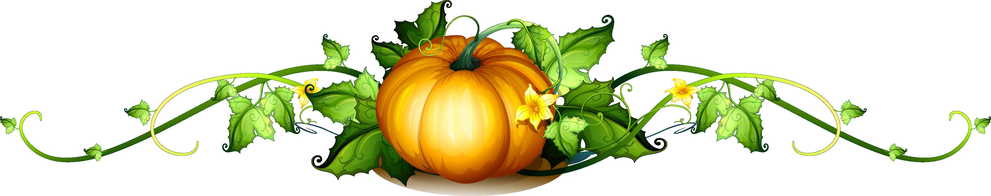 Clipart pumpkin vegetable. Vine royalty free clip