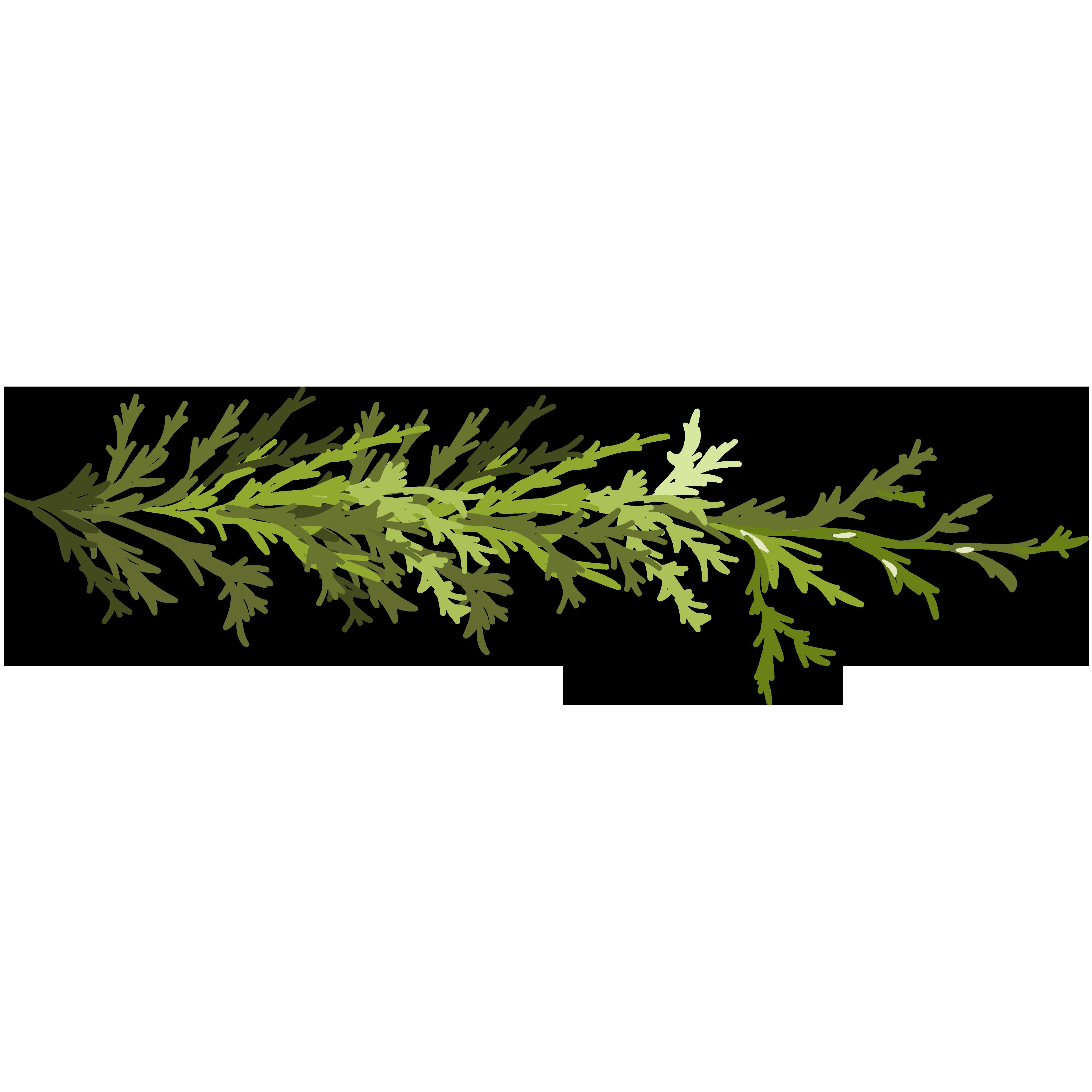 Clip art green leaves. Leaf clipart twig