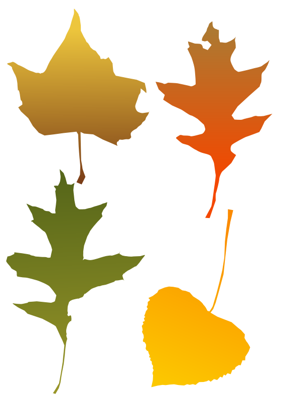 Free graphics of trees. Leaves clipart windy