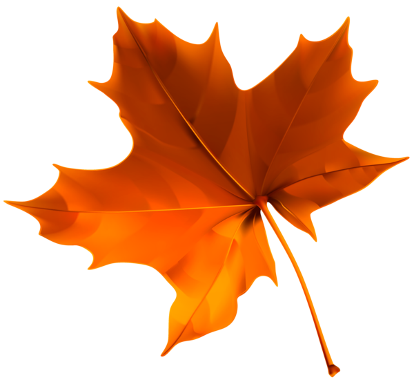 Red leaf png image. Winter clipart autumn