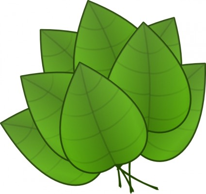 Leaves clipart. Green images panda free