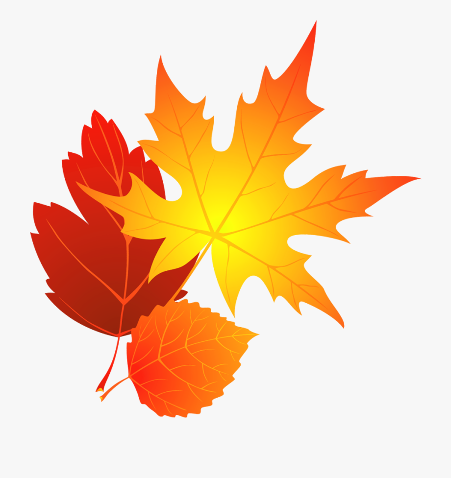 Falling leaves fall . Autumn clipart transparent background