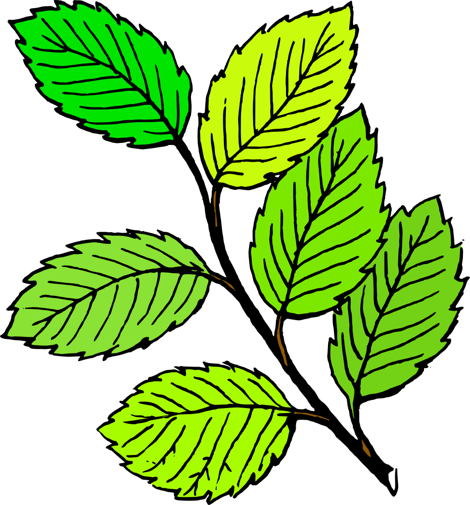 Leaves clipart. Leaf clip art free