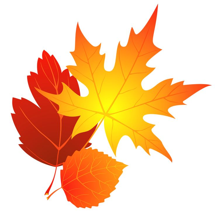 Clipart leaves 3 leaves. Free fall png images