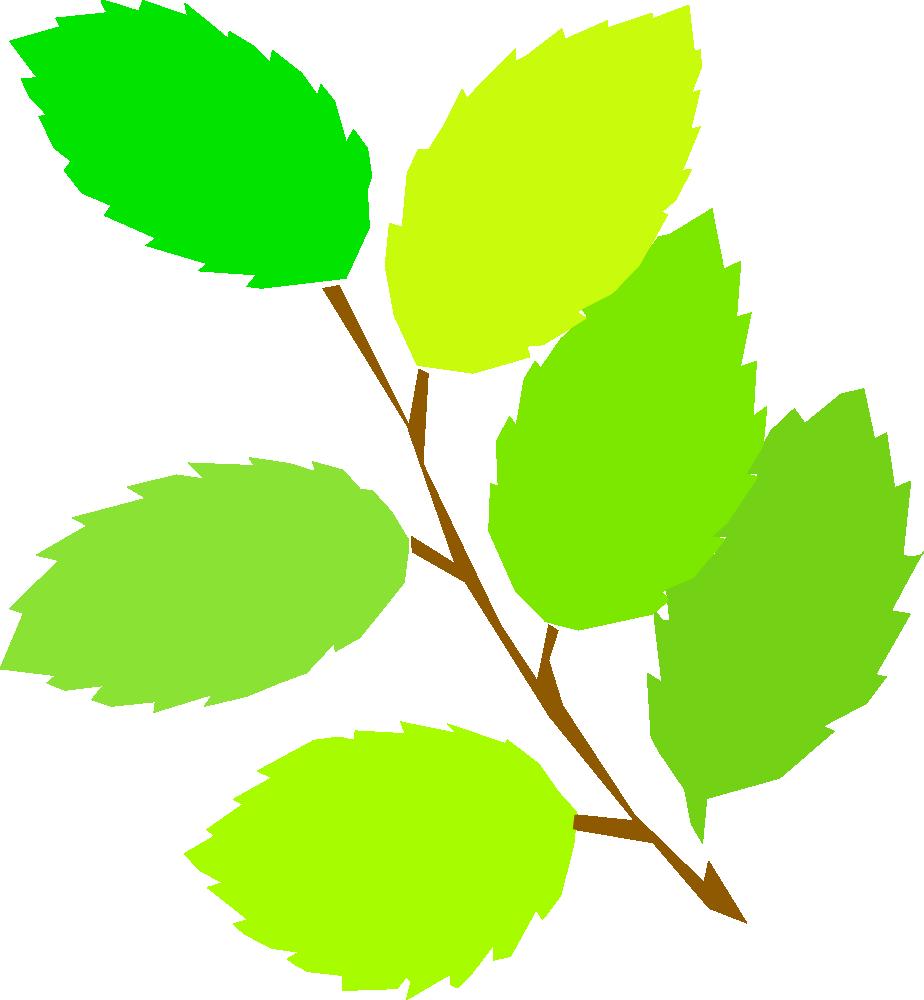 Onlinelabels clip art simple. Leaf clipart birch tree