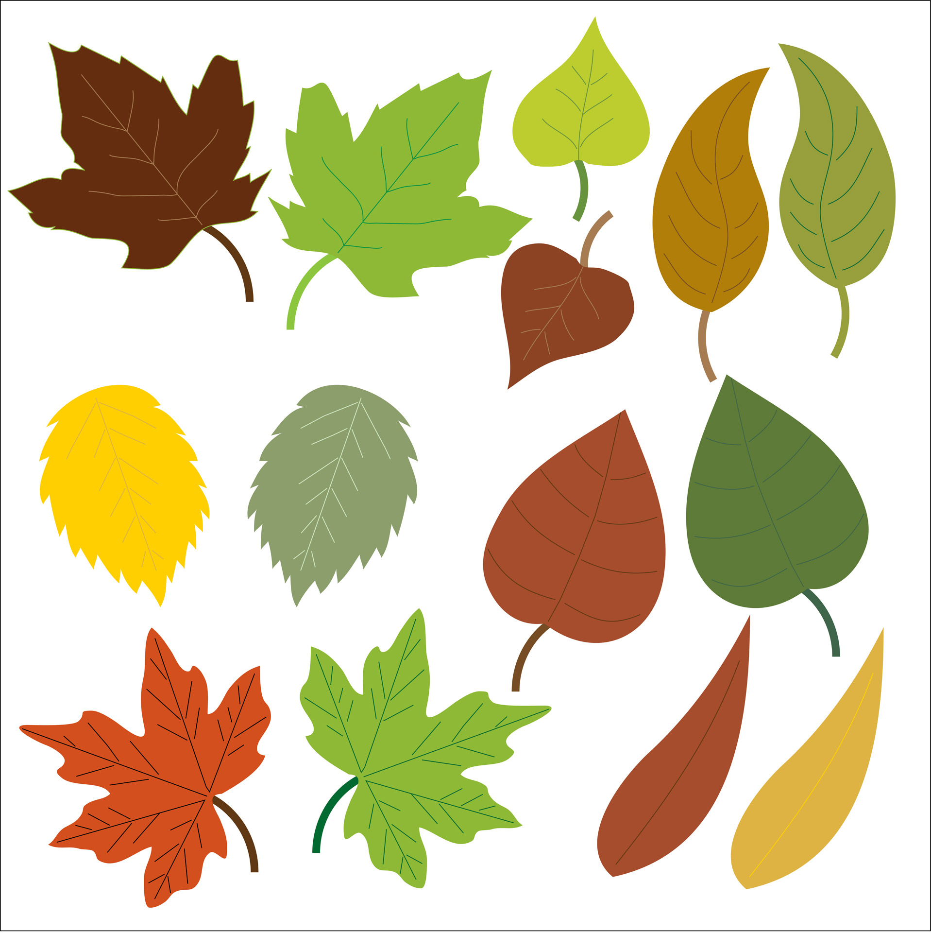 Free stock photo public. Leaves clipart