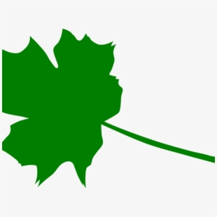 Maple green leaf download. Leaves clipart 5 leave