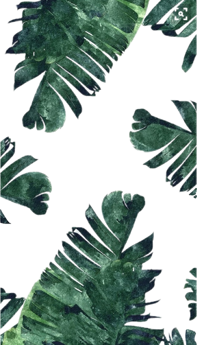 Clipart Leaves Aesthetic Clipart Leaves Aesthetic Transparent Free For Download On Webstockreview 2020