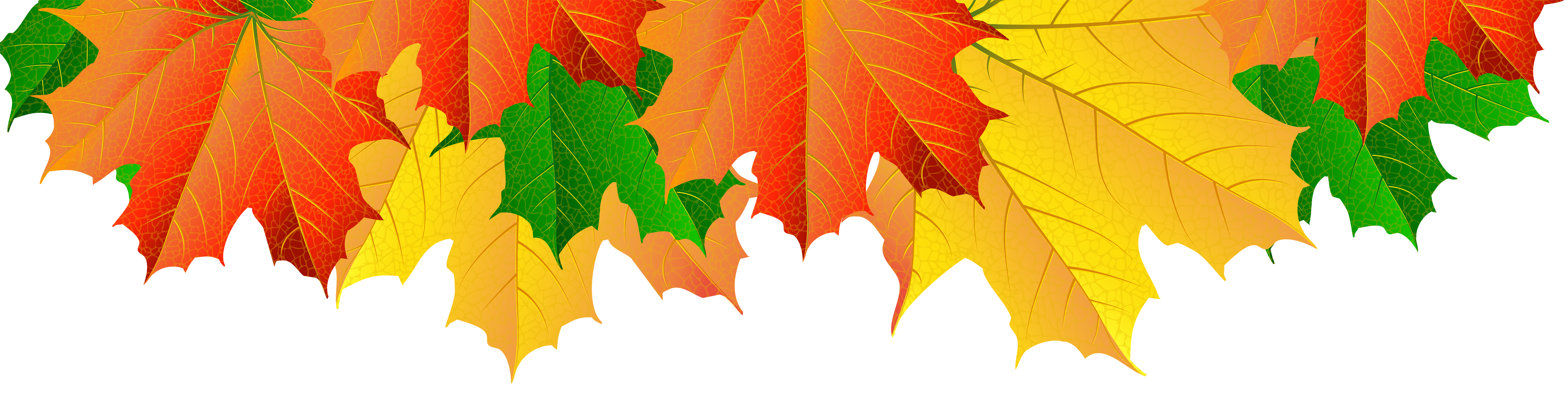 Clip art image gallery. Fall leaves border png
