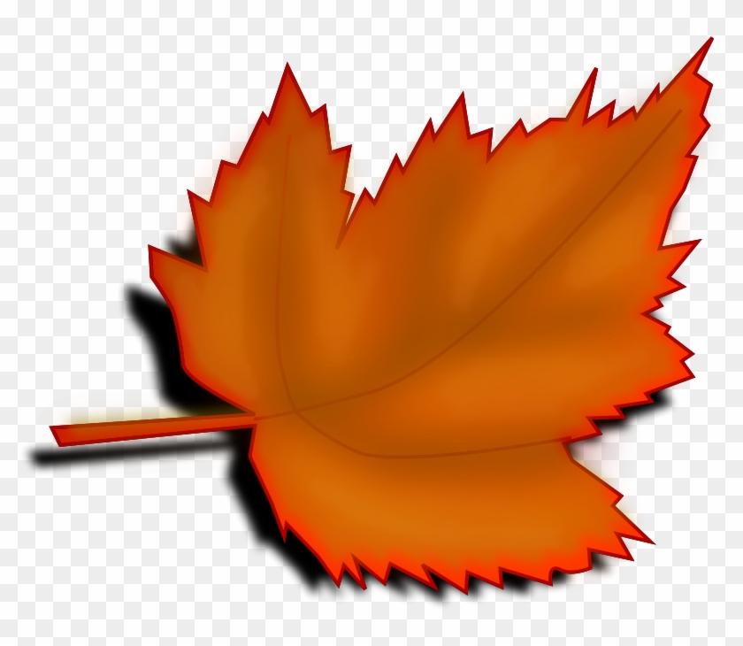 Leaf clipart transparent background. Maple november leaves