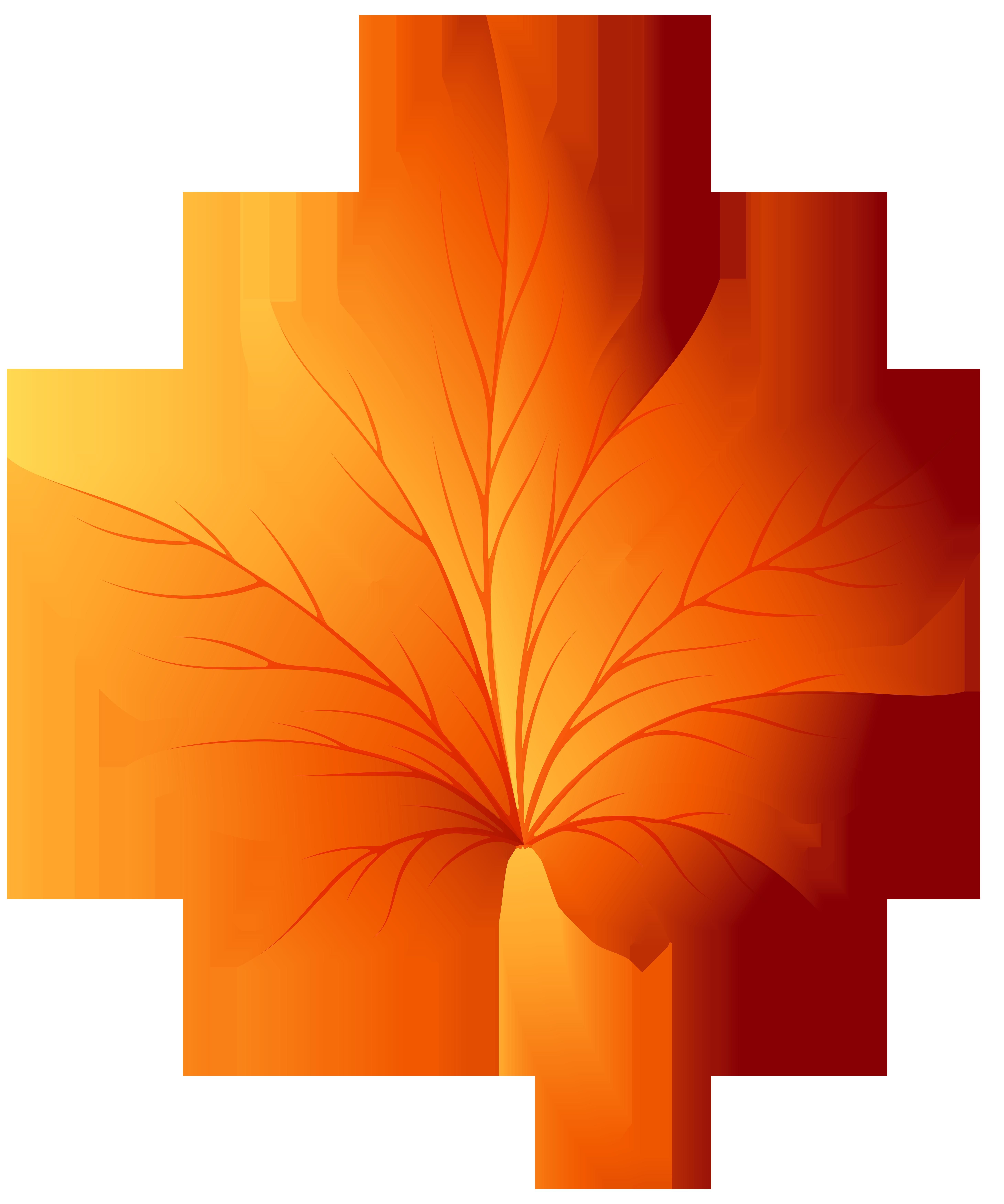 Clipart leaves color. Autumn leaf clip art