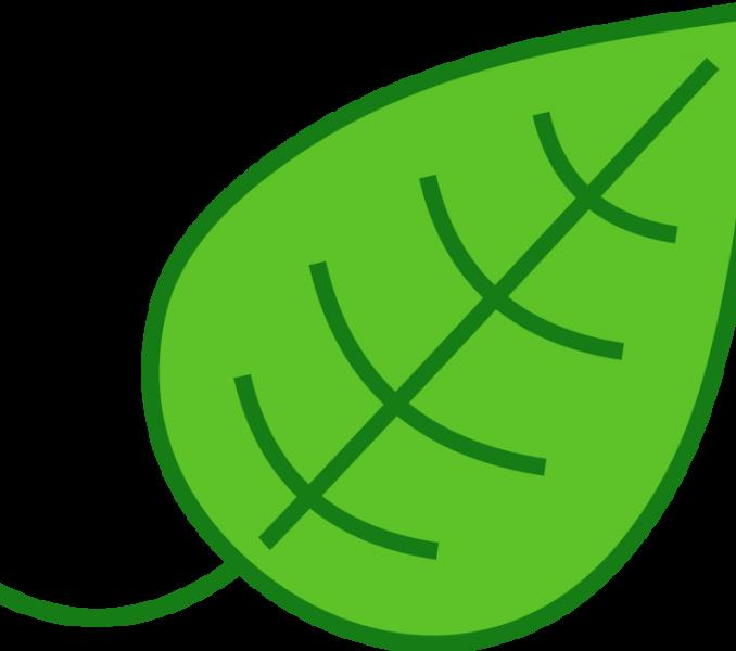 Clipart leaves color. Leaf images clip art