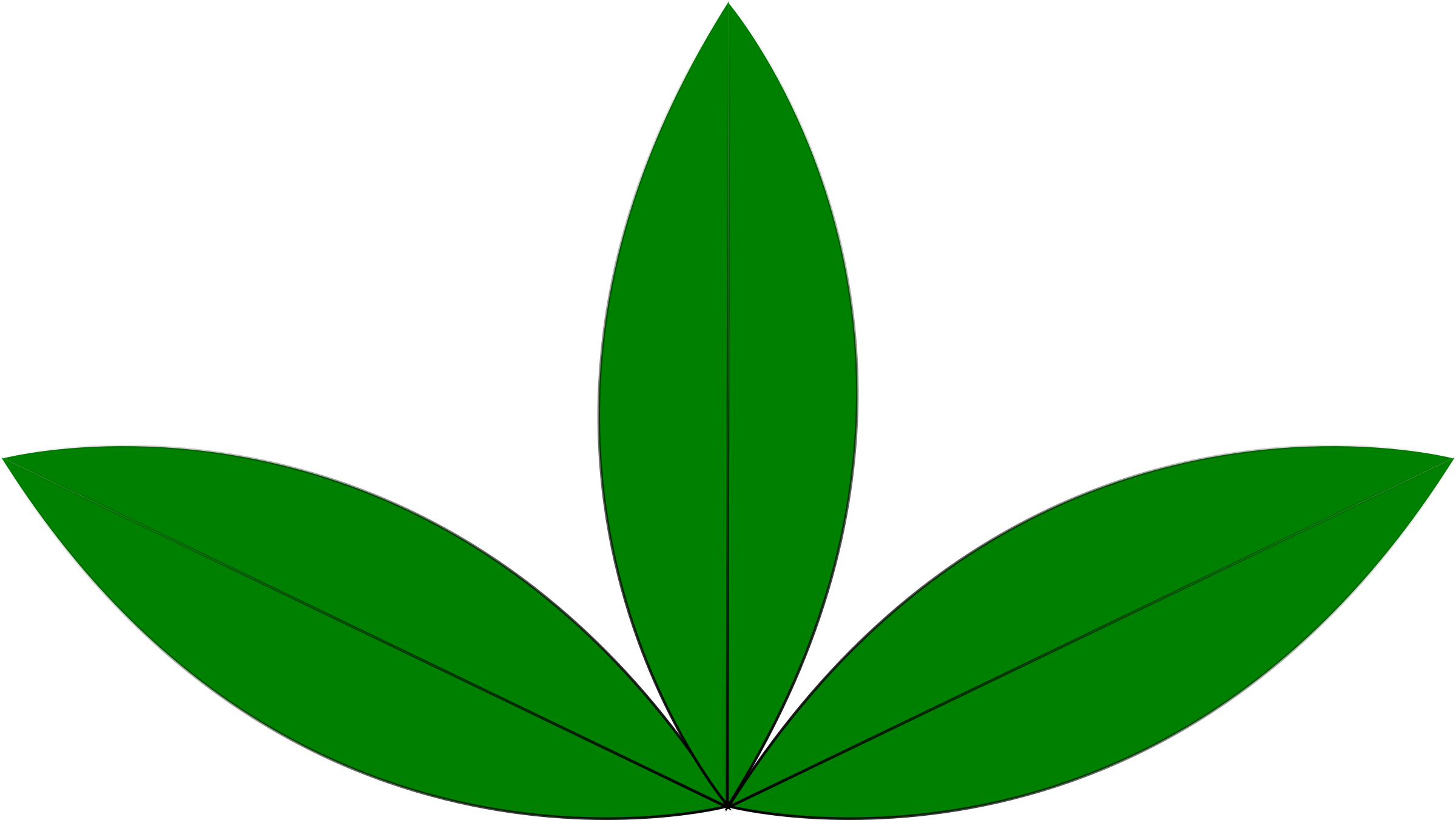 seedling clipart sprouted