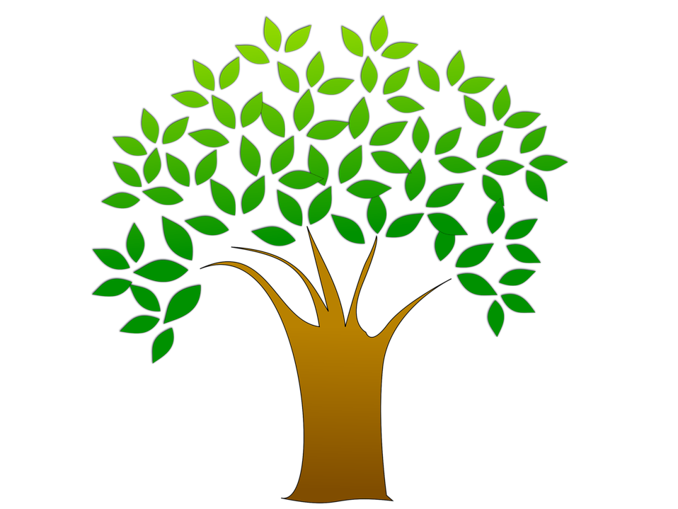 Clipart tree family tree. How to start tracing