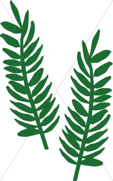 Leaf free download best. Palm clipart fern