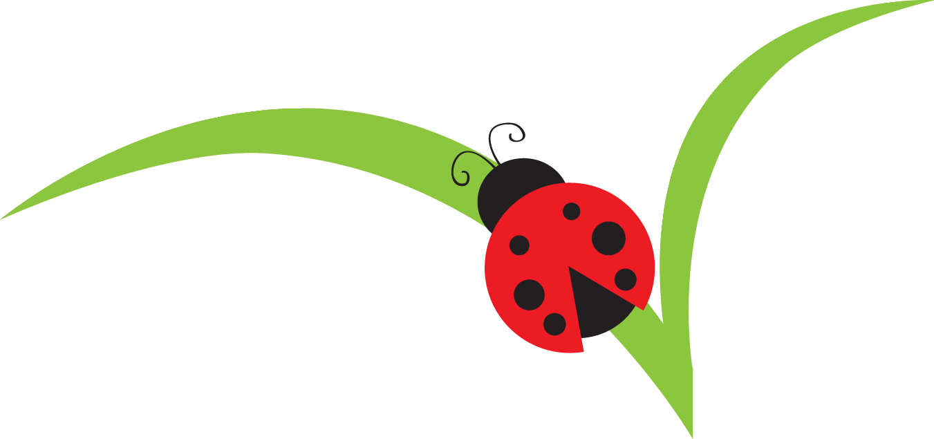 Image of branches bug. Lady clipart flower