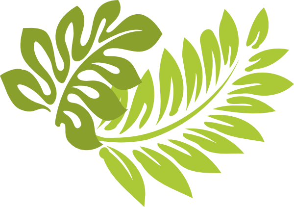 Hawaii clipart leaf. Leaves flower x free