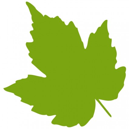 Free pictures of grape. Grapes clipart leaves