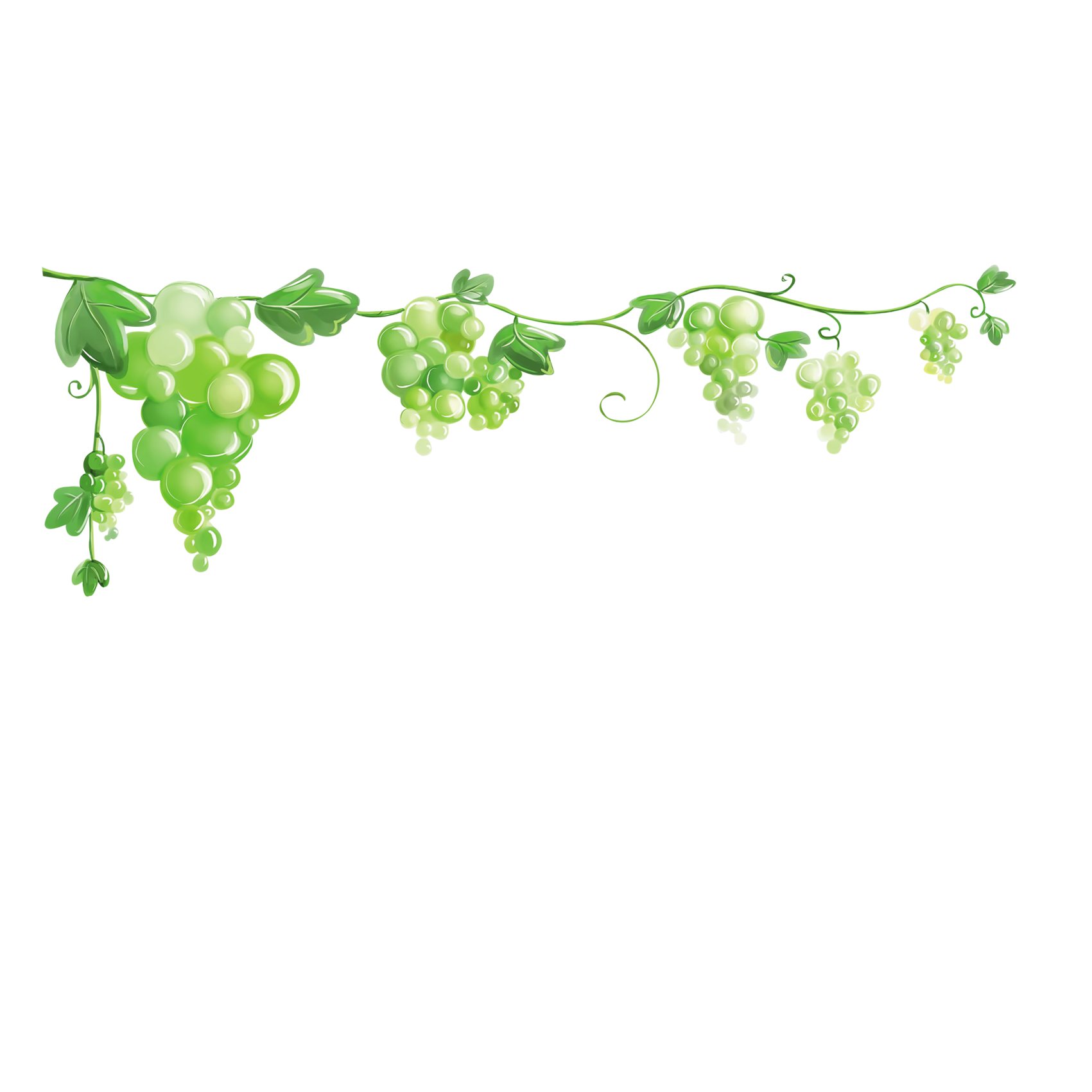 Grape clip art transprent. Grapes clipart border