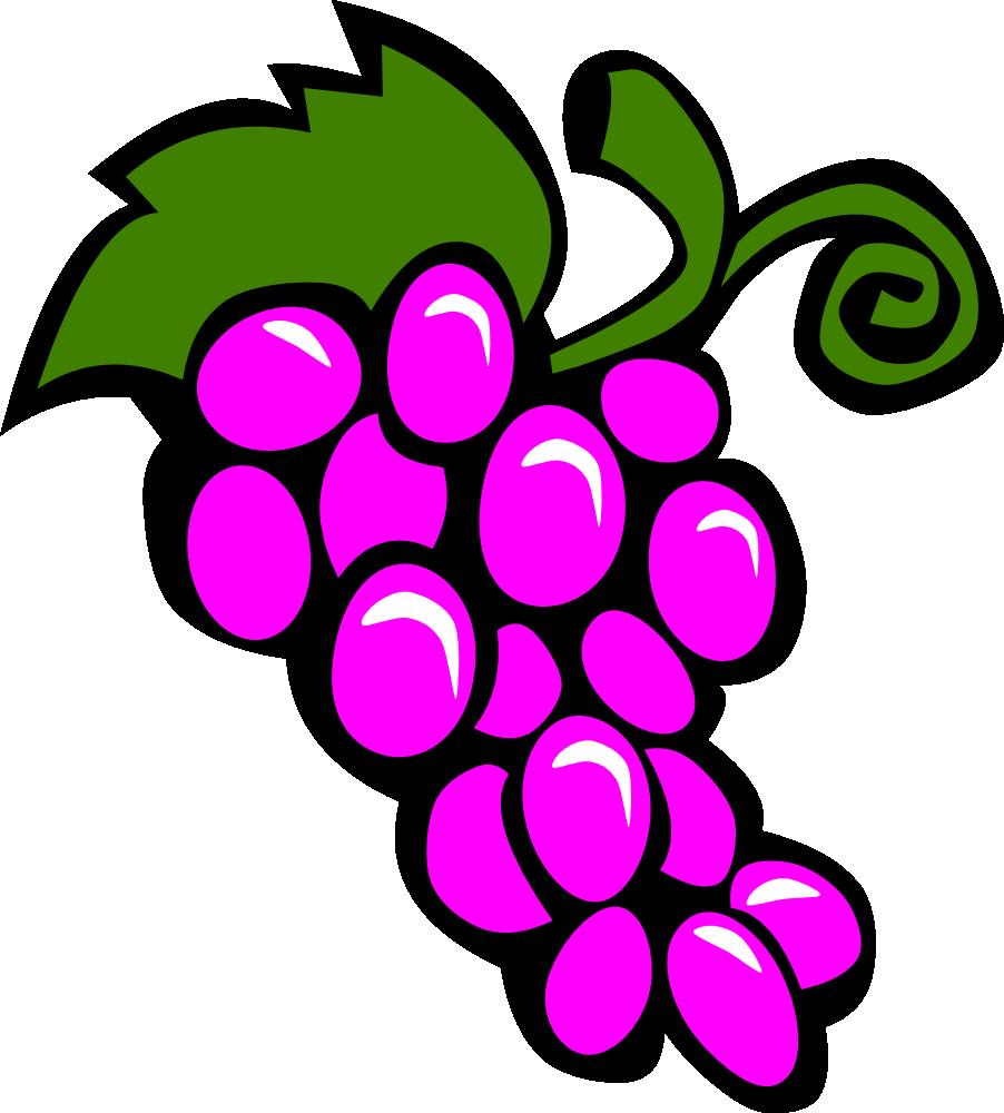 Onlinelabels clip simple fruit. Grapes clipart line art