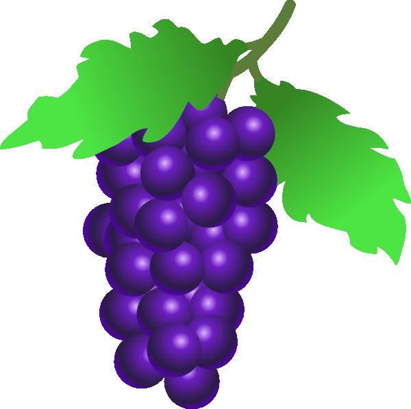 Grapes vine clip art. Clipart sunglasses cartoon