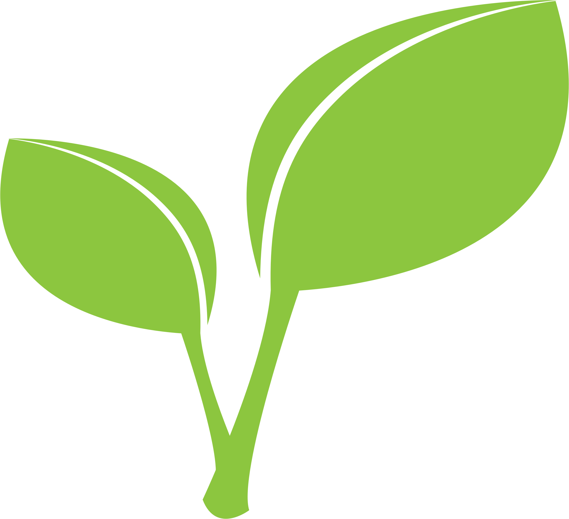 Leaf clipart icon. Eucalyptus free download best