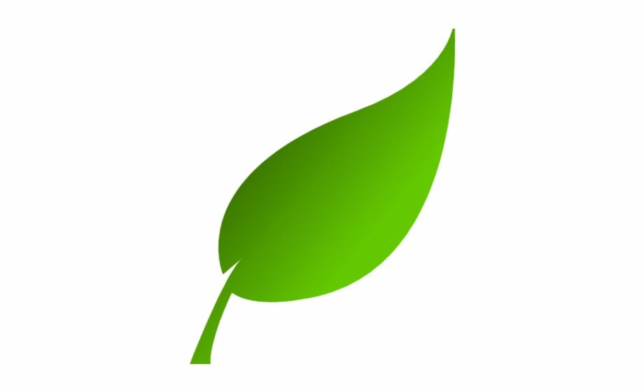 Leaf Clipart Logo Leaf Logo Transparent Free For Download On Webstockreview 2020