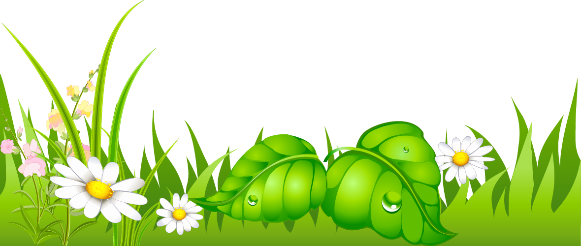 Ground clipart grounds. Grass with daisies png