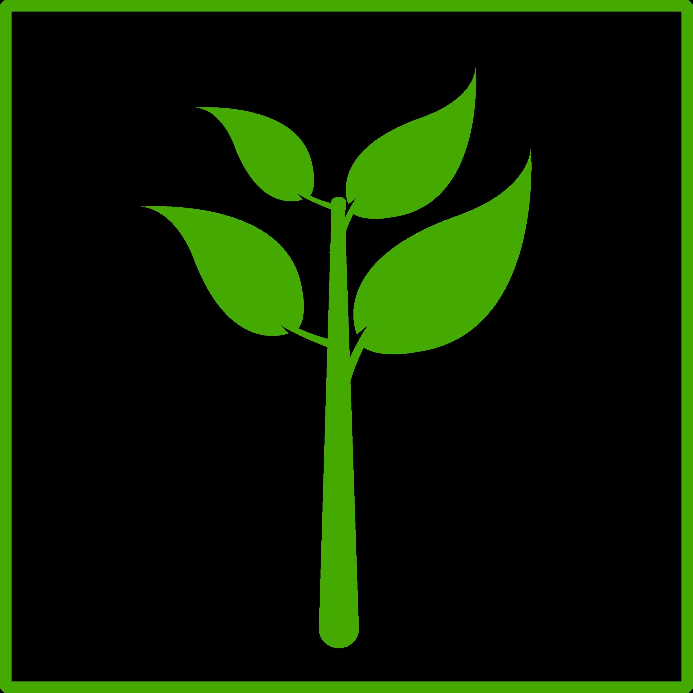 Eco green plant icon. Seedling clipart leaf stem