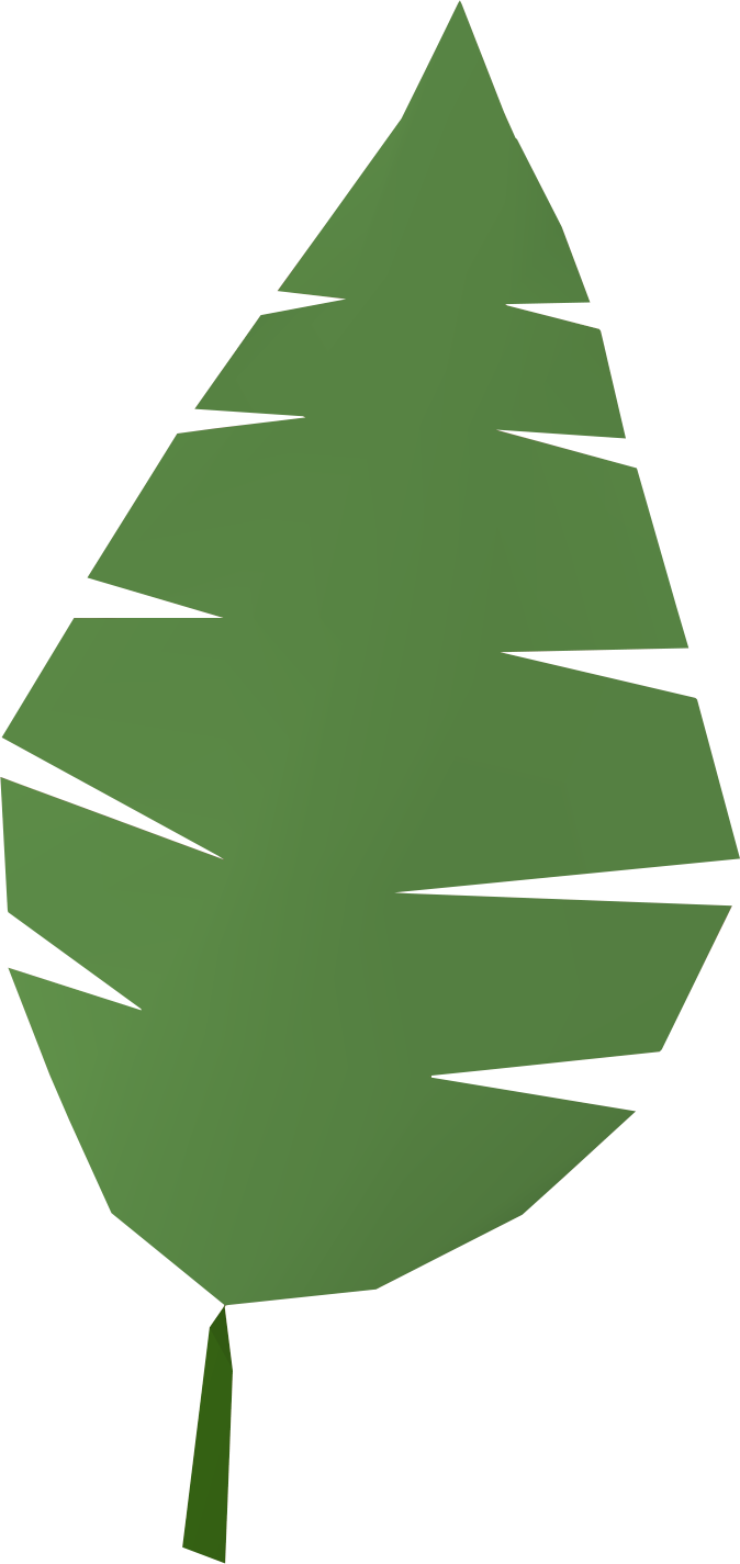 jungle clipart leafy