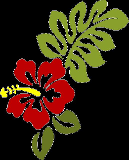 Estes s o algum. Moana clipart detailed flower