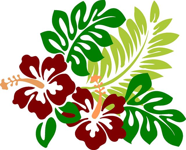 Hibiscus clipart svg free. Imagen gratis en pixabay