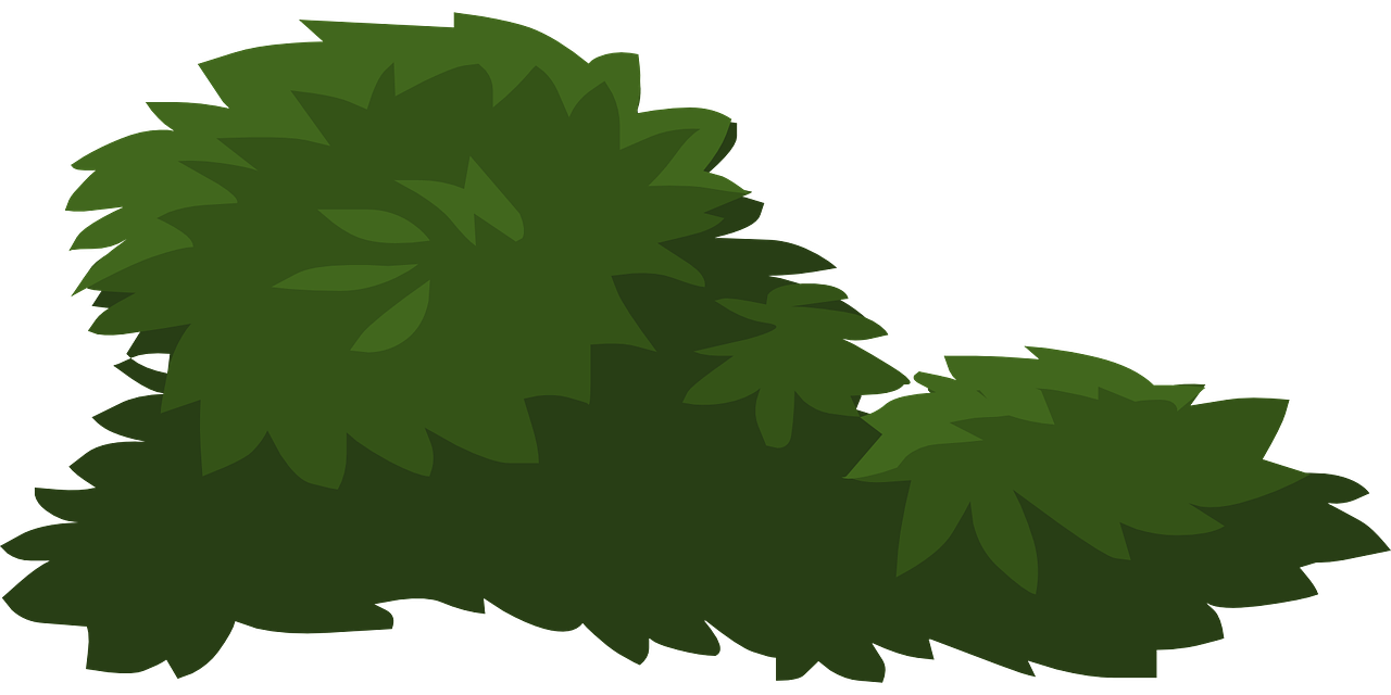 Clipart leaves mango tree. Clip art bushes transprent
