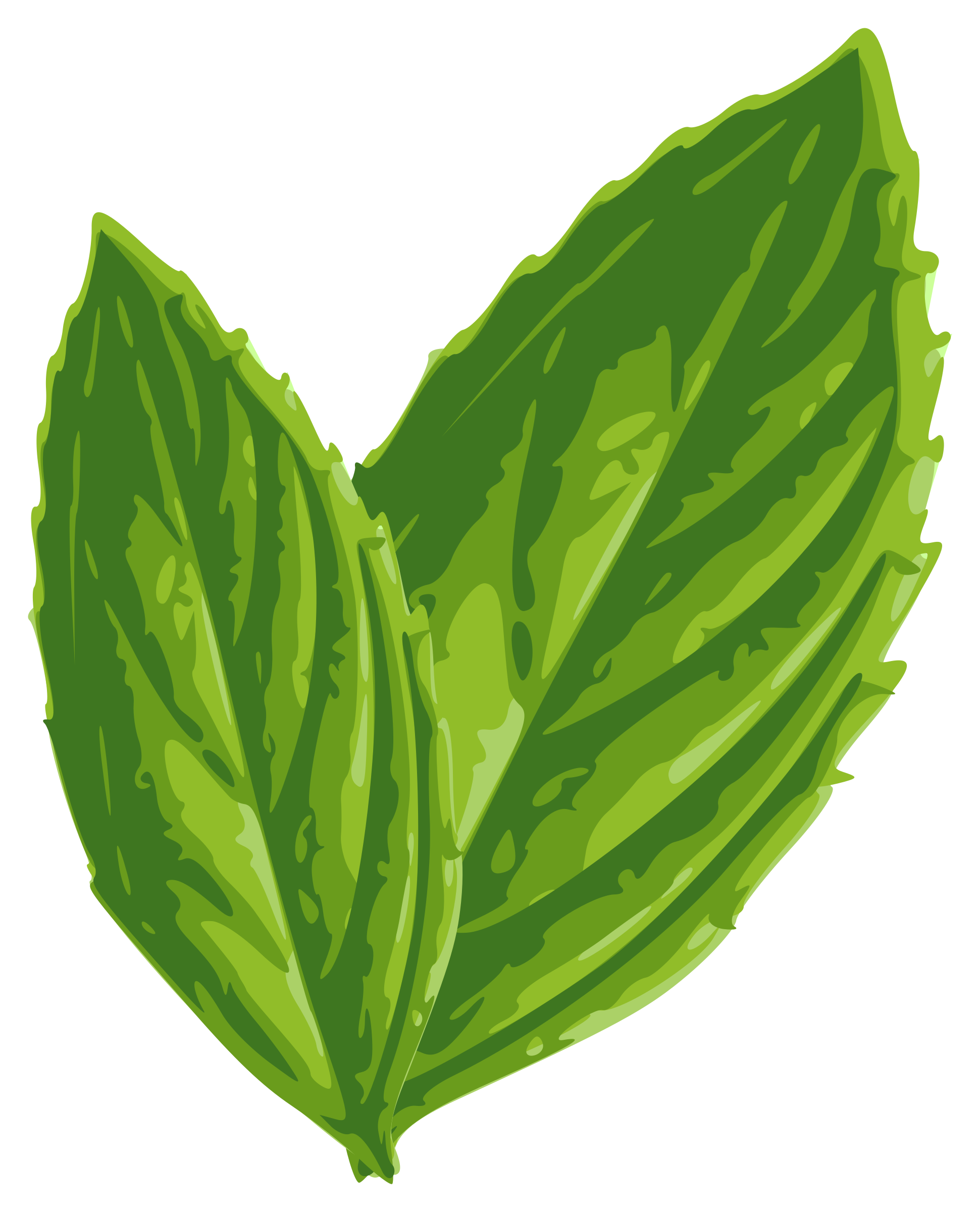 Free mint cliparts download. Flower clipart leaves