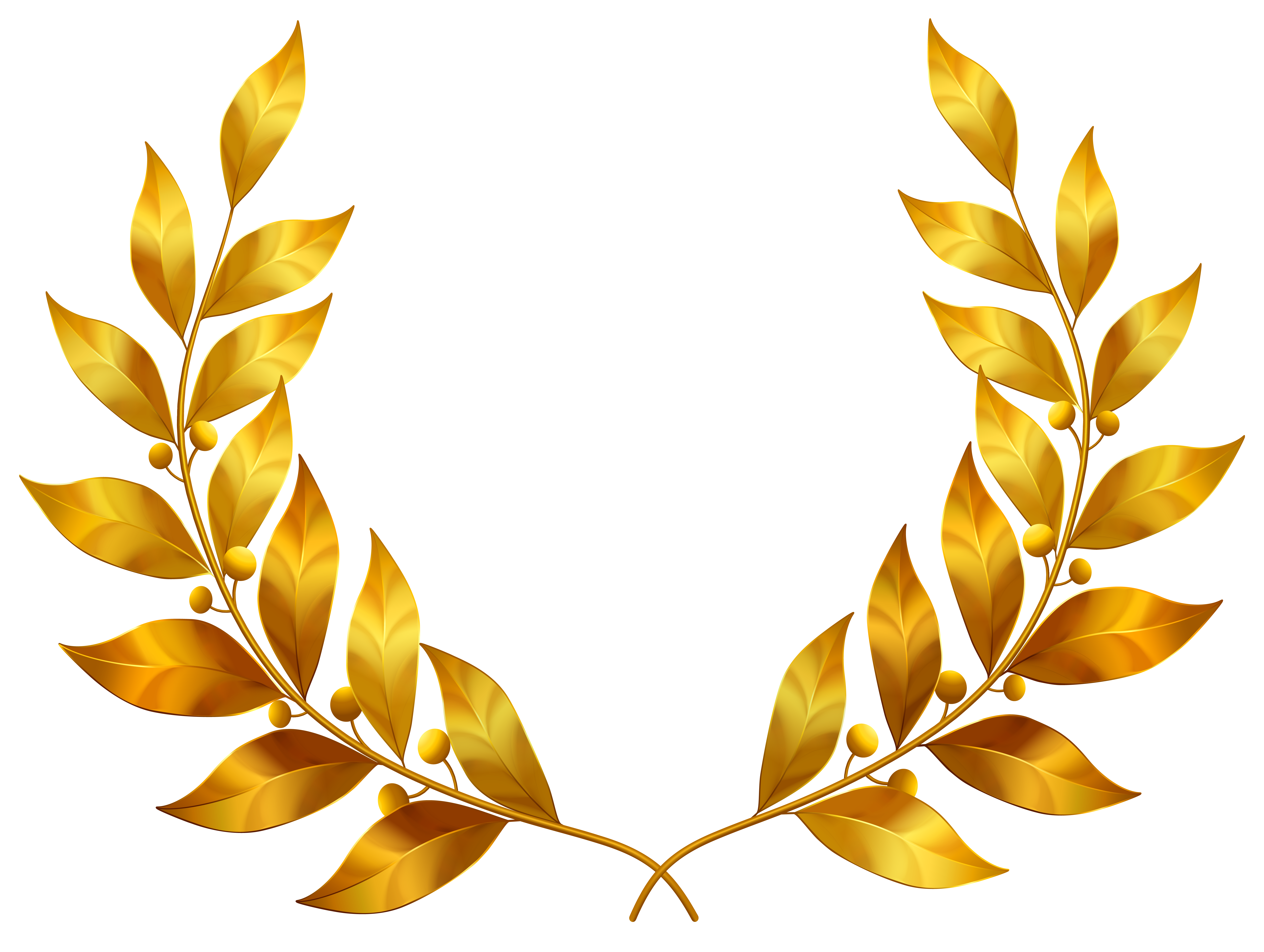 Greek clipart wreath. Laurel leaves png image