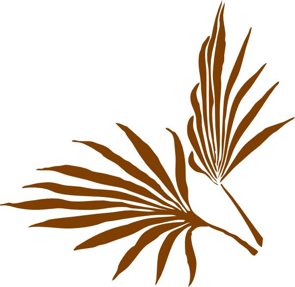 Leaf clip art at. Clipart leaves palm leaves