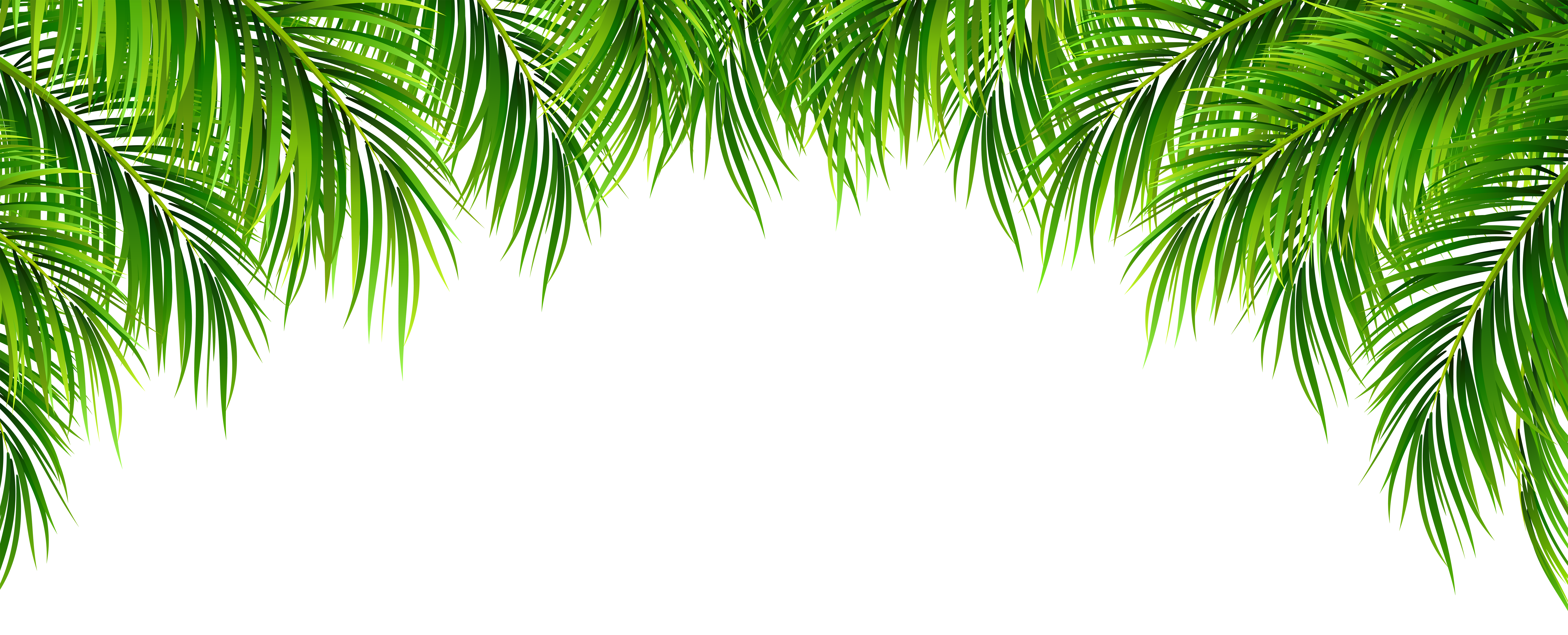Decor png clip art. Clipart leaves palm leaves
