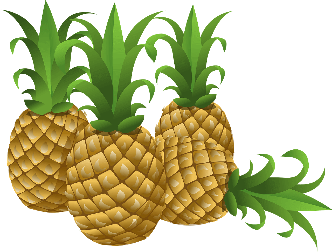 Is leather the future. Pineapple clipart logo