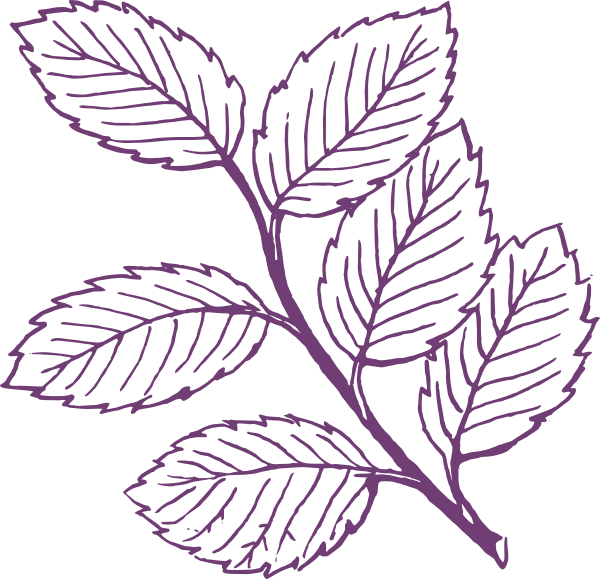 Purple leaves clip art. Leaf clipart black and white