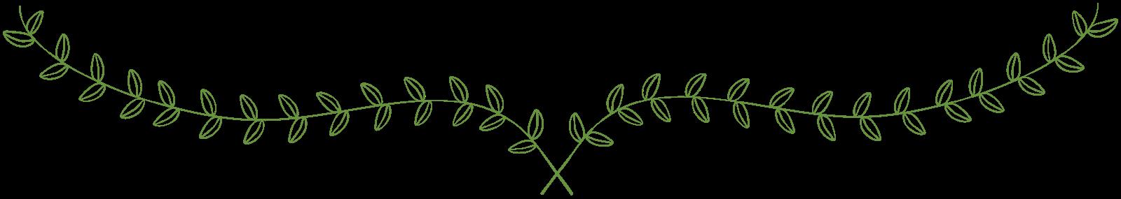 Free laurel frames arrows. Vines clipart calligraphy