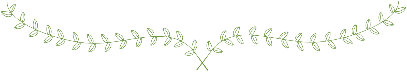 Free leaves cliparts download. Vines clipart rustic
