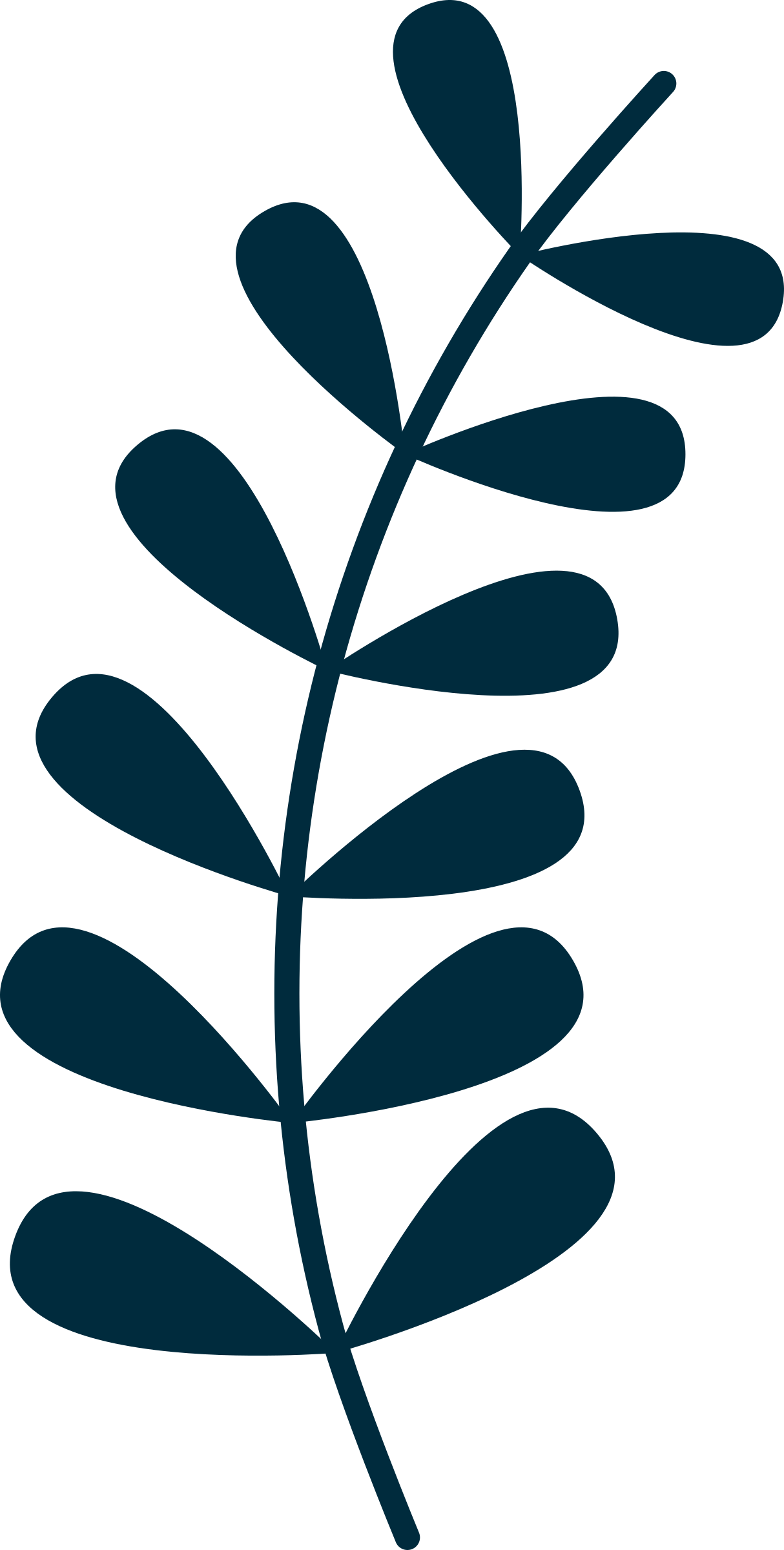 Clipart trees vine. Simple big image png