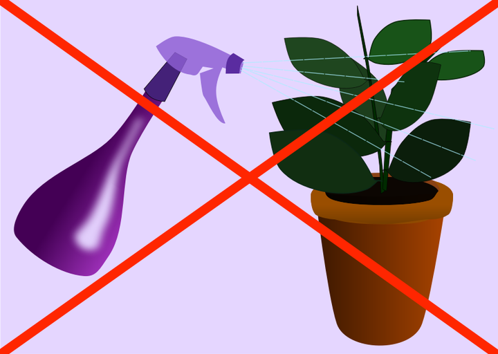 Higher humidity means happier. Plants clipart house plant