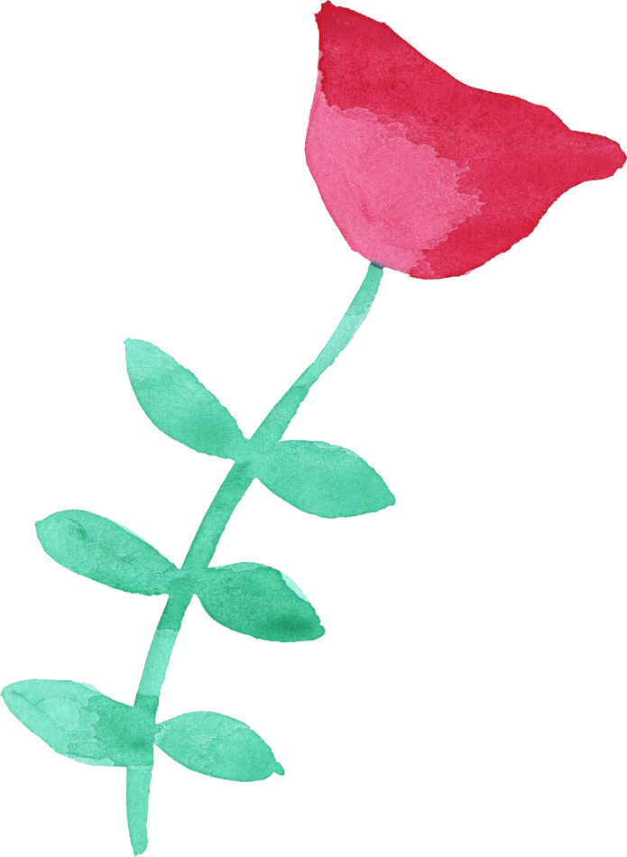 Flower watercolor png.  flowers transparent vol