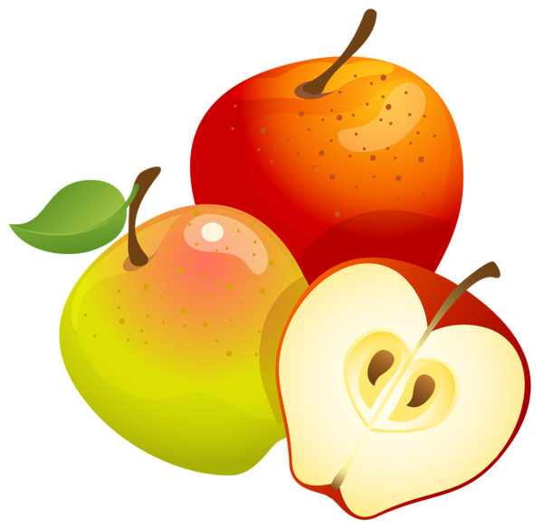 Large painted apples png. Foods clipart vector