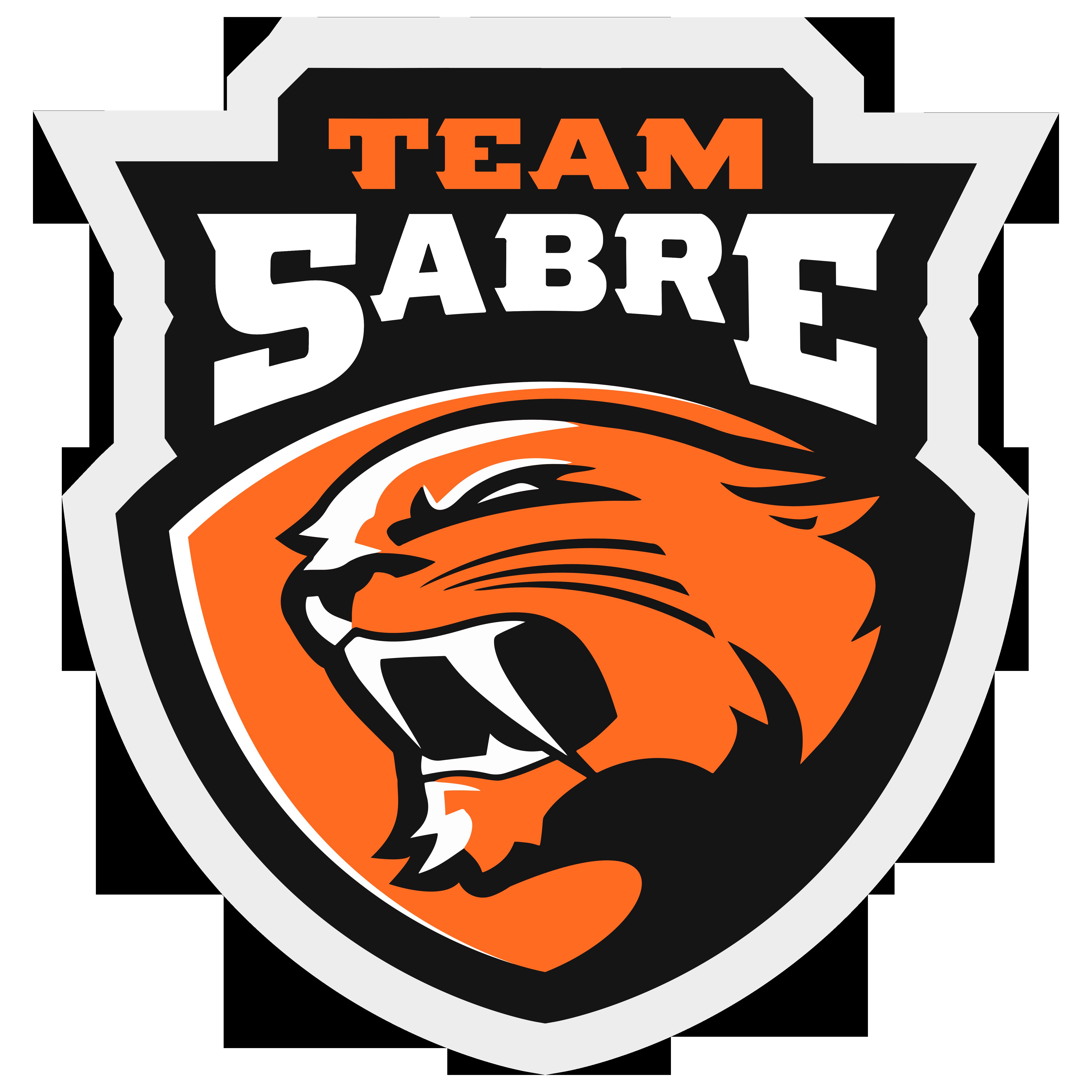 Team sabre transparent ai. Teamwork clipart logo
