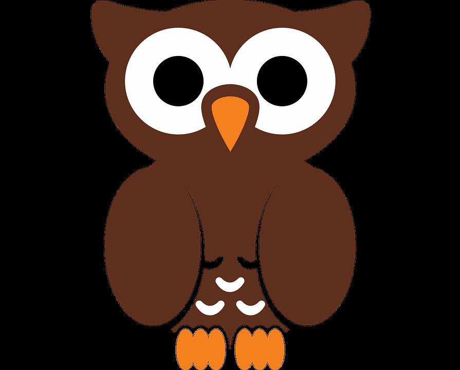 Clipart library owl. Cartoon shop of buy